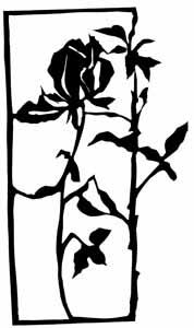 holzknecht-rose