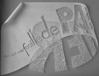 feuille_2-09