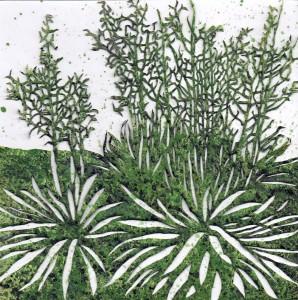 Ruth Bühlmann: Blütenstände, 2012, 18x18cm