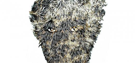 "Hans Lankes, ""Beardo 17"", 2015, 60 x 50 cm."